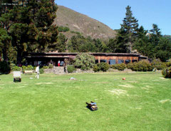 Glade in front of Esalen dining commons and admin building.
