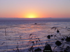 Sunset viewed from the Esalen glade.