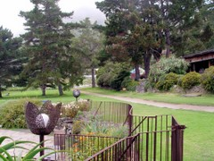 View of Esalen grounds.