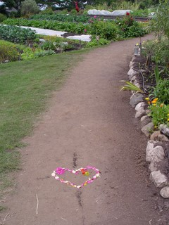 Footpath with flower petals in a heart shape.