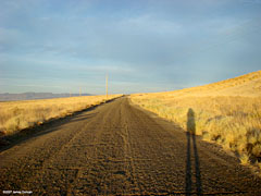 Road to Rattlesnake Hill, Fallon, NV